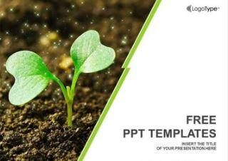 Plantilla de germinacion para Powerpoint
