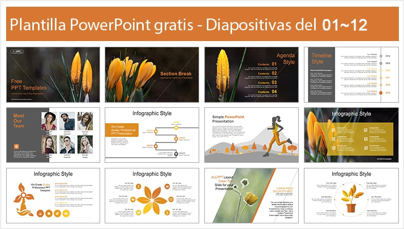 Flower power point template free.