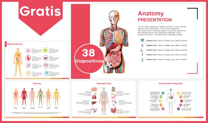 Plantilla power point de anatomia humana para descargar gratis.